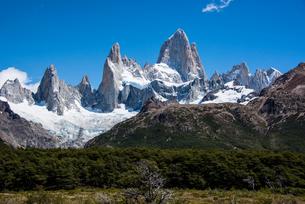 パタゴニアの名峰フィッツロイと南極ブナの森の写真素材 [FYI04091264]
