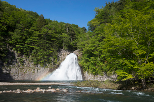 新緑の法体の滝の写真素材 [FYI04091319]