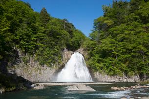 新緑の法体の滝の写真素材 [FYI04091323]