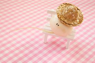 麦わら帽子をかぶった顔のあるかわいいカブとイスの写真素材 [FYI04091885]