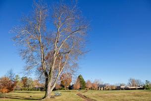 アメリカ、ヴァージニア州リトルワシントン村の風景の写真素材 [FYI04091989]