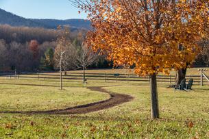 アメリカ、ヴァージニア州リトルワシントン村の風景の写真素材 [FYI04091993]