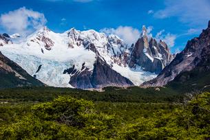 パタゴニアの針峰セロトーレと南極ブナの森林の写真素材 [FYI04092254]