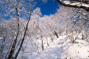 ふきだし公園と樹氷の写真素材 [FYI04092527]