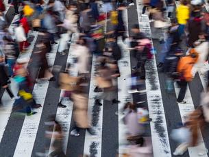 横断歩道を渡る歩行者の様子の写真素材 [FYI04092555]