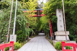 来宮神社の写真素材 [FYI04092557]