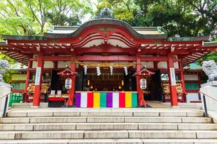来宮神社の写真素材 [FYI04092558]