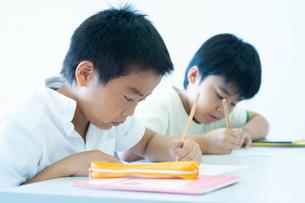 勉強する小学生の写真素材 [FYI04092599]