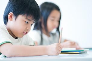 勉強する小学生の写真素材 [FYI04092638]