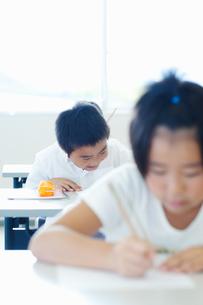 勉強する小学生の写真素材 [FYI04092666]
