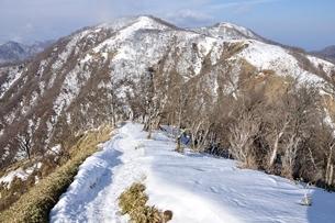 雪の丹沢主脈縦走路の写真素材 [FYI04093063]