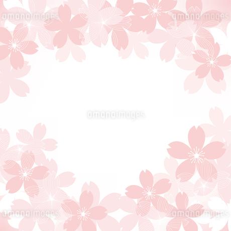 桜 イラスト 背景のイラスト素材 Fyi ストックフォトのamanaimages Plus