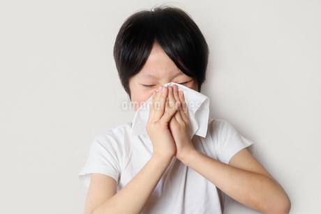 鼻をかむ子供の写真素材 [FYI04093184]