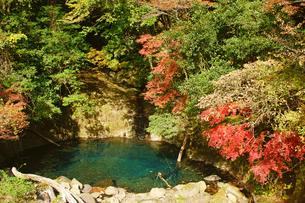 菊池渓谷の紅葉の写真素材 [FYI04093282]