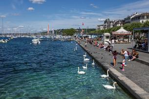スイス、ジュネーブのレマン湖風景の写真素材 [FYI04093703]