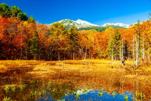 紅葉のどじょう池と冠雪の乗鞍岳の写真素材 [FYI04093818]