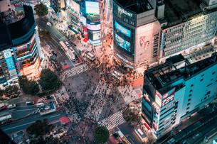 俯瞰で望む渋谷の夜景の写真素材 [FYI04093928]