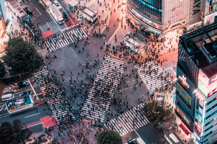 俯瞰で望む渋谷の夜景の写真素材 [FYI04093929]
