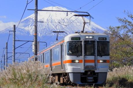 JR東海313系と富士山の写真素材 [FYI04093980]