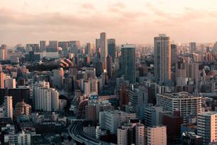 夕暮れの東京都心のビル群の写真素材 [FYI04094006]