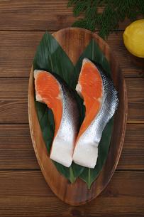 鮭の写真素材 [FYI04094031]