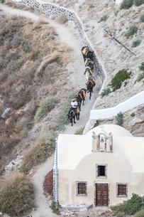 サントリーニ島で見る輸送手段用のロバの列の写真素材 [FYI04094967]