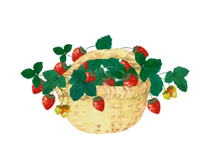 イチゴとバスケットのイラスト素材 [FYI04095188]