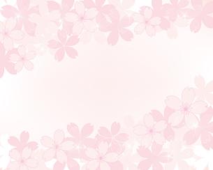桜 イラスト 背景のイラスト素材 [FYI04095294]