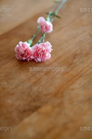 テーブルに置かれたカーネーションの写真素材 [FYI04095339]