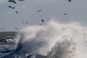 荒れた海の写真素材 [FYI04095488]