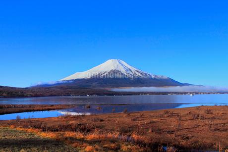 山中湖より富士山の写真素材 [FYI04095914]