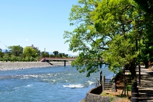 新緑の宇治川上流の流れの写真素材 [FYI04096250]