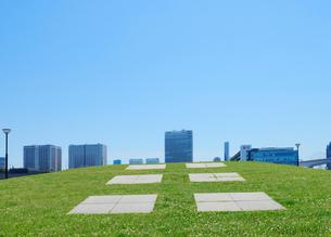 豊洲ぐるり公園の緑地と高層ビル群の写真素材 [FYI04096463]