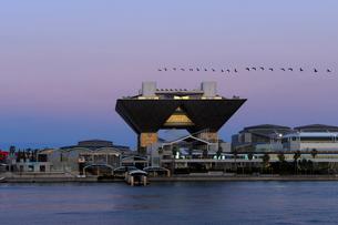 夕暮れの東京国際展示場の会議棟と鵜の群れの写真素材 [FYI04096464]