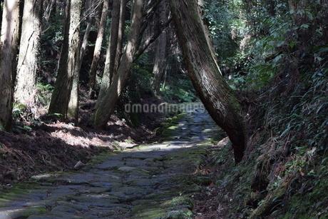 竜門坂の写真素材 [FYI04096590]