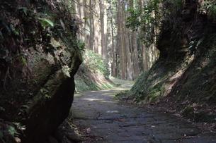 竜門坂の写真素材 [FYI04096594]