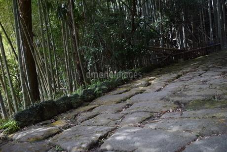 竜門坂の写真素材 [FYI04096595]