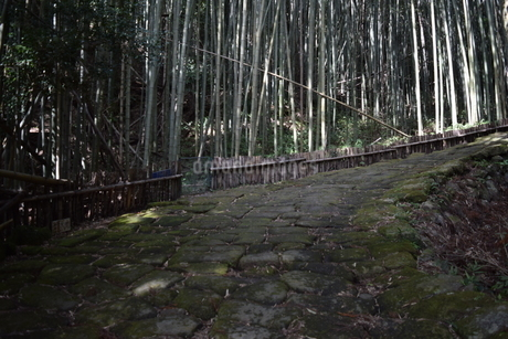 竜門坂の写真素材 [FYI04096596]