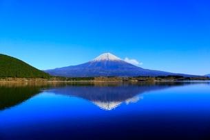田貫湖より富士山の写真素材 [FYI04096666]