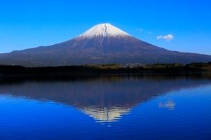 田貫湖より富士山の写真素材 [FYI04096674]
