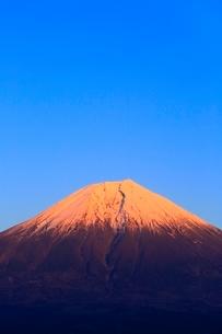 田貫湖より富士山の夕景の写真素材 [FYI04096679]