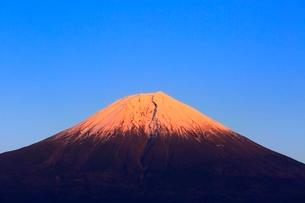 田貫湖より富士山の夕景の写真素材 [FYI04096680]