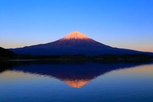 田貫湖より富士山の夕景の写真素材 [FYI04096681]