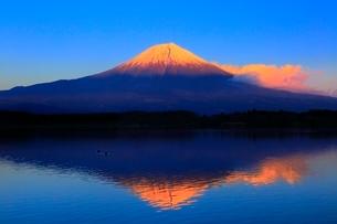 田貫湖より富士山の夕景の写真素材 [FYI04096696]