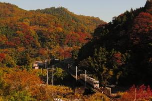 第二酒匂川橋梁を渡る御殿場線313系と紅葉の写真素材 [FYI04097044]
