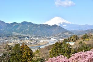 松田山から望む富士山の写真素材 [FYI04097198]