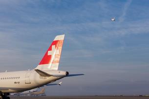 飛行機、スイス航空の写真素材 [FYI04097284]