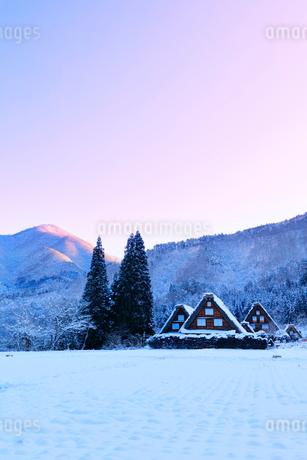 世界文化遺産 冬の白川郷に朝焼け空の写真素材 [FYI04097297]
