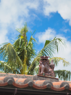 シーサーのある屋根の写真素材 [FYI04097577]