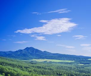 北海道 自然 風景 開陽台 (朝景)の写真素材 [FYI04097716]